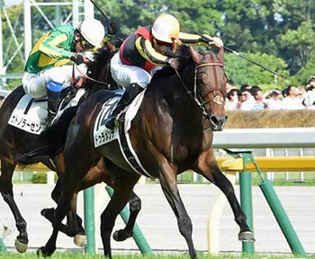 ドゥラメンテ 皐月賞 ダービー 圧勝 競走馬 能力喪失 種牡馬 引退.png